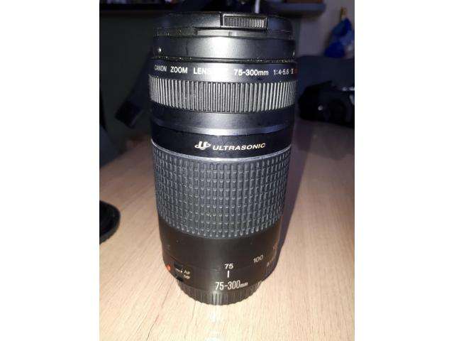 Objectif Canon EF 75-300 mm