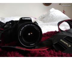 Canon 600D jamais vraiment servi - état quasi neuf