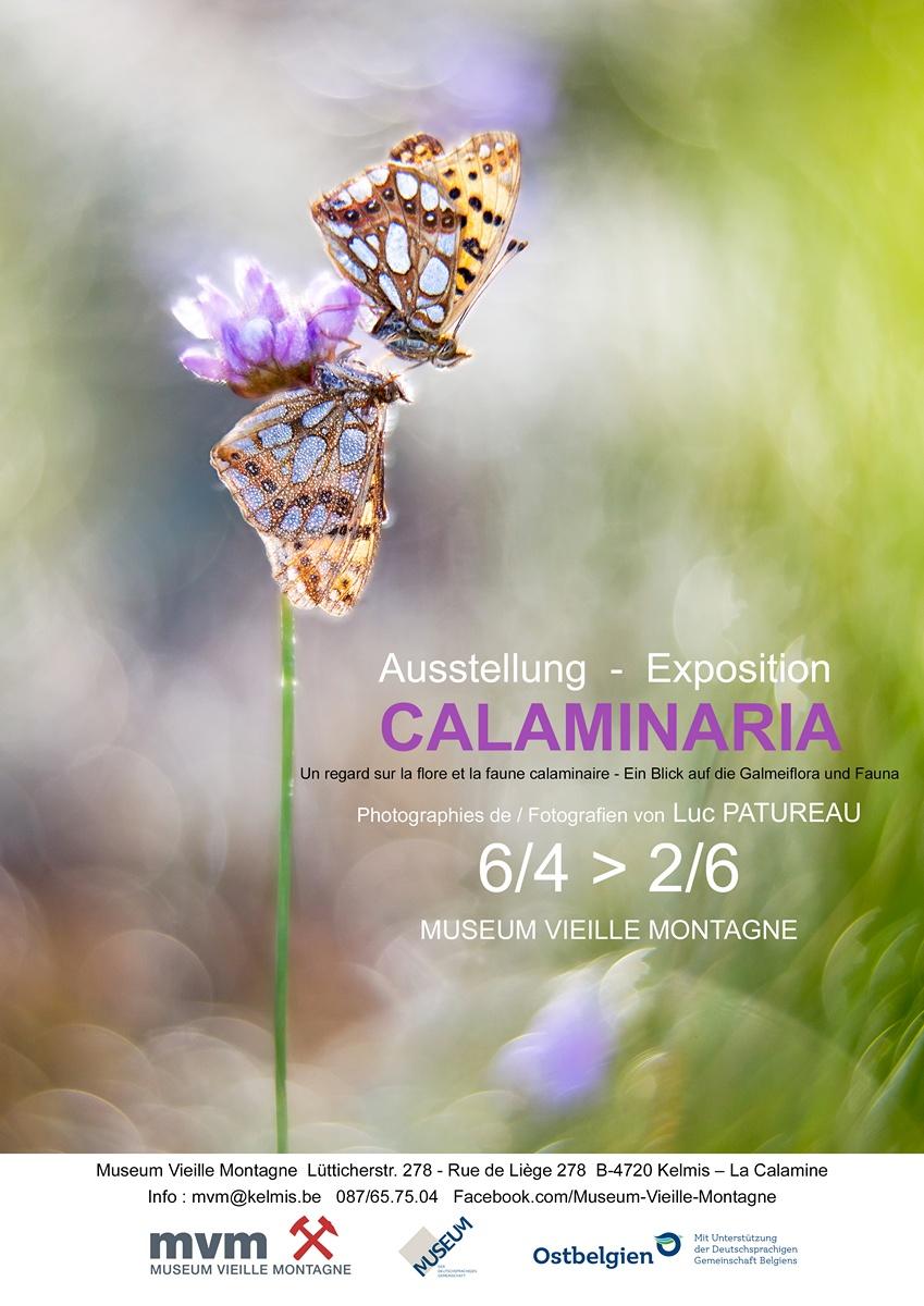 Calaminaria